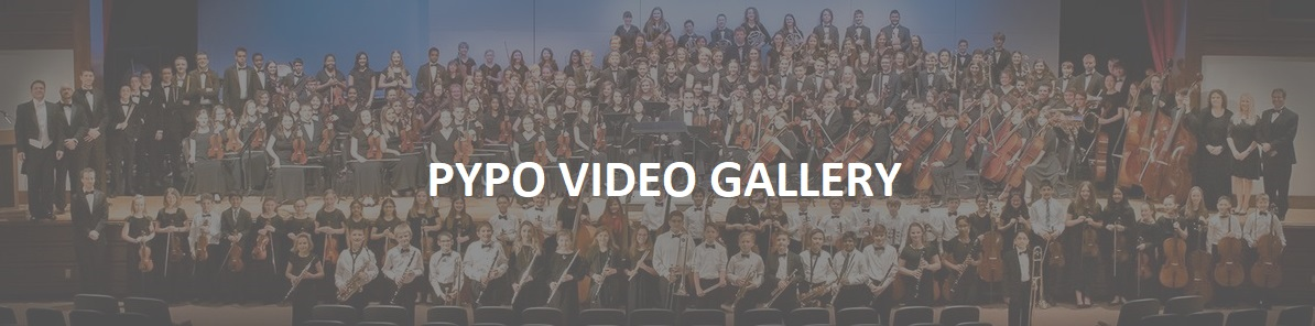 video-gallery